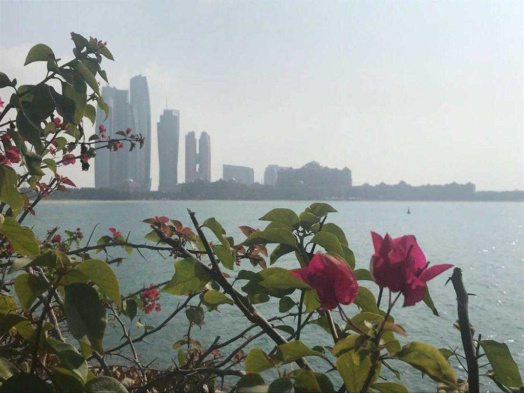 Поиск работы в Дубае