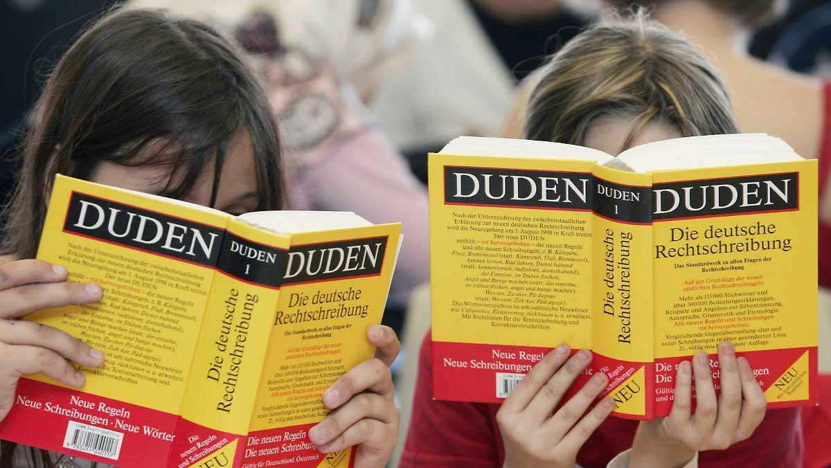 Язык в Германии и его особенности
