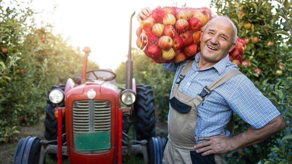 Работа на ферме в США