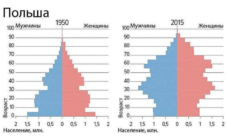 Половой состав населения Польши
