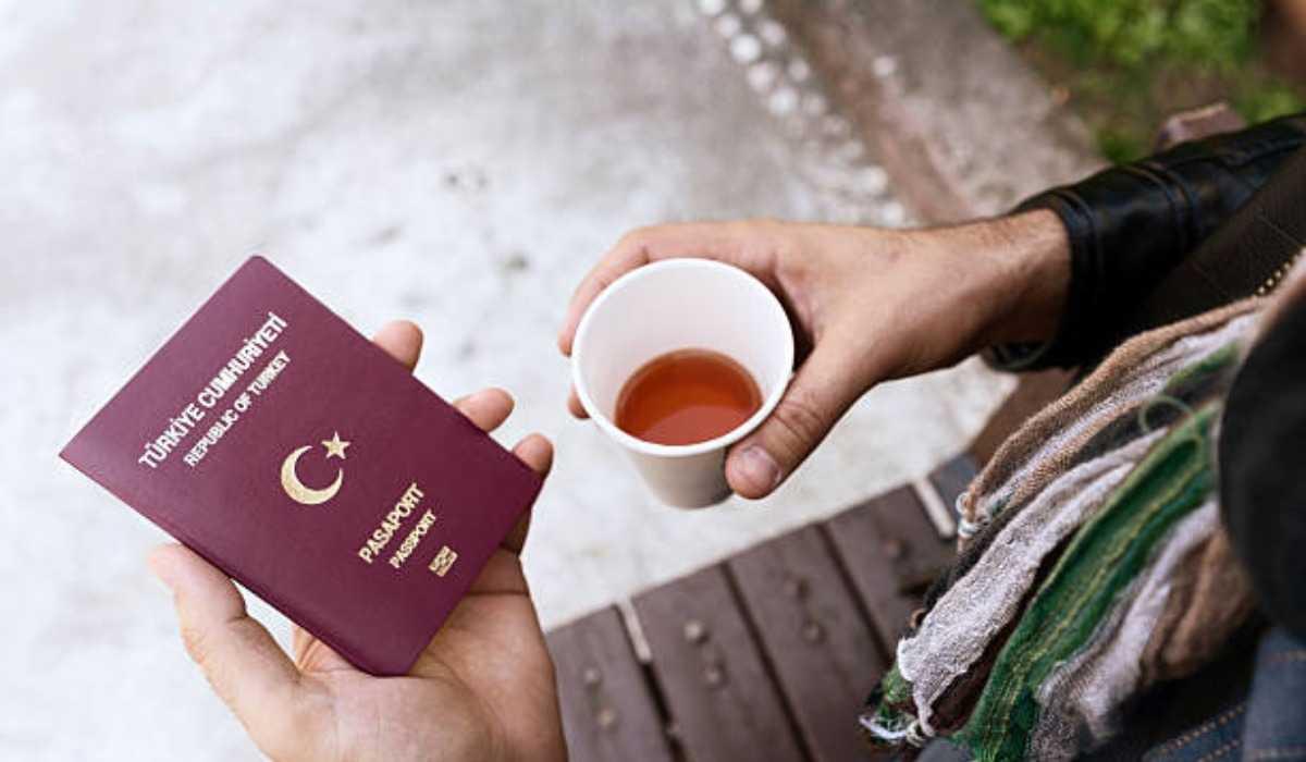 Как получить гражданство Турции: инструкции для иммигрантов